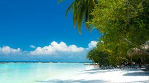 Превью обои пальмы, пляж, океан, тропики, побережье, рай