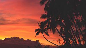 Превью обои пальмы, закат, облака, тропики, небо