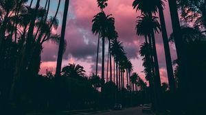 Превью обои пальмы, закат, облака, тропики, небо, пористый