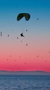Превью обои параплан, парашют, море, полет, птицы, горизонт