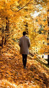 Превью обои парень, пальто, одиночество, парк, деревья, листья, осень