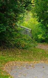 Превью обои парк, деревья, опавшие листья, осень, пейзаж