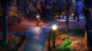 Превью обои парк, осень, город, фонари, тротуар, тропинки, листья