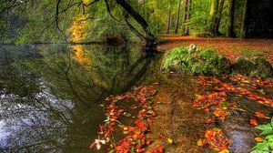 Превью обои парк, осень, листья, пруд, деревья, плита