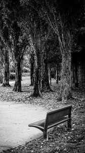 Превью обои парк, скамейка, листья, осень, черно-белый