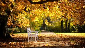 Превью обои парк, скамейка, листва, осень