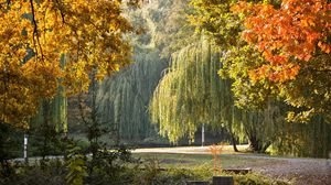 Превью обои парк, венгрия, осень, пейзаж