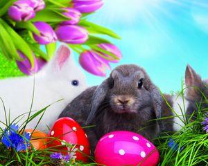Превью обои пасха, яйца, разноцветные, кролики, трава