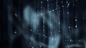Превью обои паутина, тень, блики, темный
