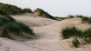 Превью обои песок, трава, следы