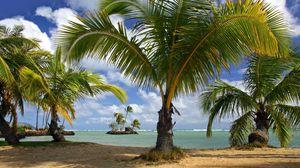 Превью обои пляж, море, песок, лето