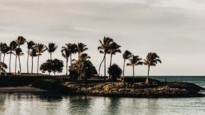 Превью обои побережье, море, пальмы, деревья, пейзаж