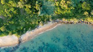 Превью обои побережье, пляж, вид сверху, море, деревья, растительность