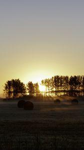 Превью обои поле, деревья, солнце, лучи, туман, закат