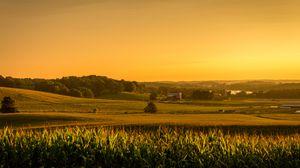 Превью обои поле, кукуруза, простор, сша, огайо