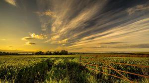 Превью обои поле, трава, ограждение, небо, лето