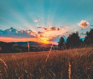 Превью обои поле, закат, трава, небо, облака