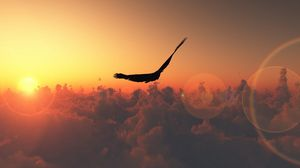 Превью обои полет, облака, солнце, птица