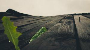 Превью обои поверхность, деревянный, макро