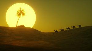Превью обои пустыня, солнце, пальма, холм, арт