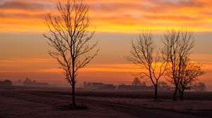Превью обои рассвет, деревья, туман, облака, пейзаж
