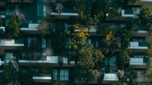 Превью обои растения, здание, фасад
