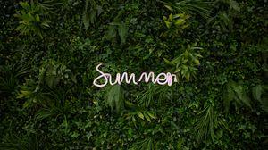Превью обои лето, растительность, надпись, растения, зелень
