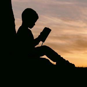 Превью обои ребенок, силуэт, книга, закат