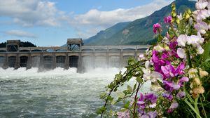 Превью обои река, дамба, горы, цветы, пейзаж