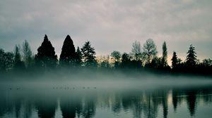 Превью обои река, деревья, туман, отражение