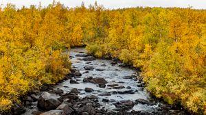 Превью обои река, камни, деревья, осень, пейзаж, природа