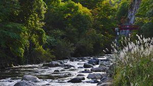Превью обои река, камни, деревья, природа