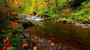 Превью обои река, камни, листья, осень