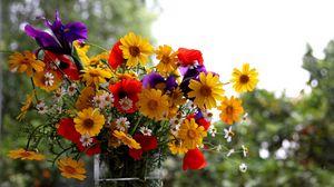Превью обои ромашки, маки, ирисы, цветы, букет, лето, ваза