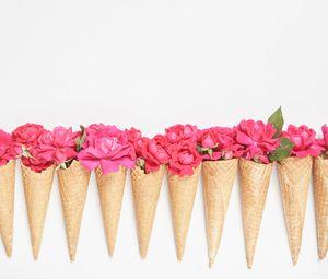Превью обои рожки, цветы, лепестки, розовый