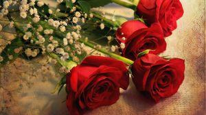 Превью обои розы, гипсофил, букет, скатерть