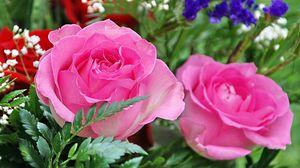 Превью обои розы, гипсофил, листья, крупный план