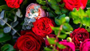 Превью обои розы, цветы, лепестки, куст, листья, макро