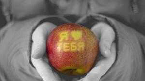 Превью обои руки, яблоко, признание