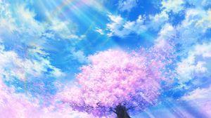 Превью обои сакура, радуга, арт, цветение, небо, облака