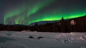 Превью обои северное сияние, лес, снег, зима, пейзаж
