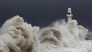 Превью обои шторм, буря, маяк, небо, птицы, волны