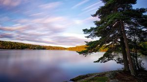 Превью обои швеция, озеро, дерево