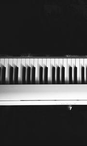 Превью обои синтезатор, клавиши, музыка, черно-белый