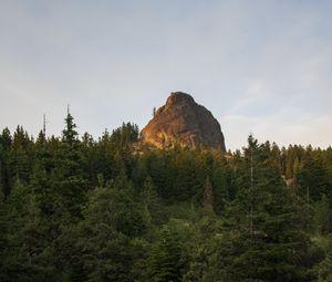 Превью обои скала, вершина, деревья, лес, природа, пейзаж