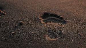 Превью обои след, песок, пляж