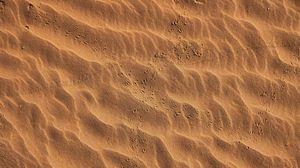 Превью обои следы, пляж, песок, пустыня