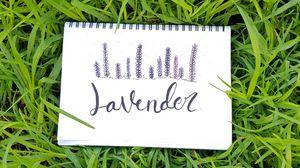 Превью обои слово, надпись, блокнот, трава