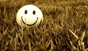 Превью обои смайл, улыбка, трава, настроение