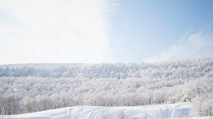 Превью обои снег, деревья, небо